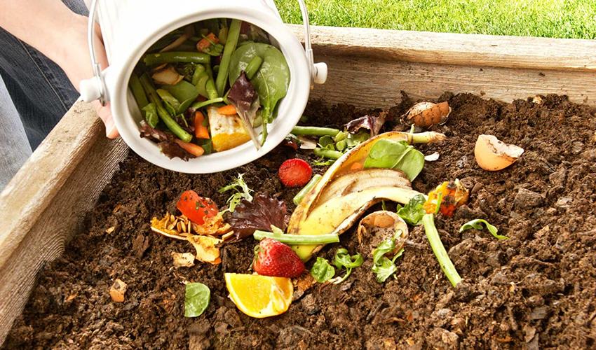 Переработка органических отходов